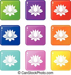 Lotus icons 9 set