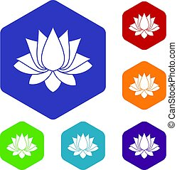 Lotus icons set hexagon