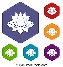 Lotus icons set hexagon isolated  illustration