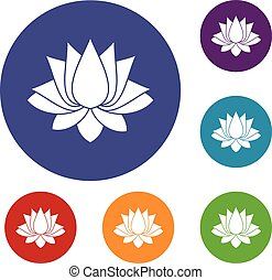 Lotus icons set in flat circle red, blue and green color for...
