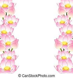 lotus, indien, frontière