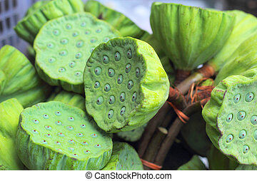 Lotus seed in the market