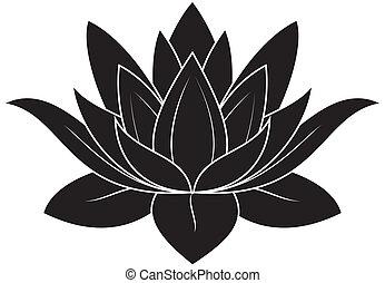 Lotus Set 025