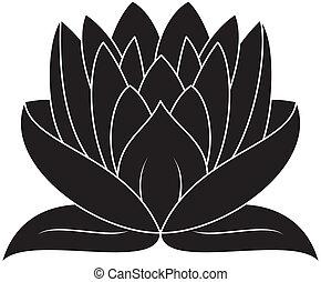 Lotus Set 026