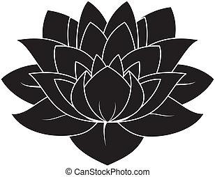 Lotus Set 027