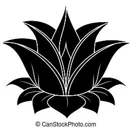 Lotus Set 031