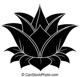 Lotus Set 032
