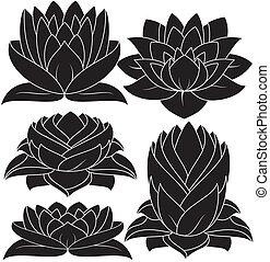 Lotus Set 3