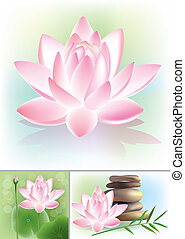Lotus. Contains transparent objects. EPS10