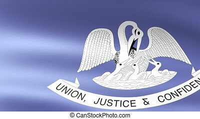 Louisiana State Flag Waving