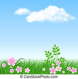 louka, květiny, dále, ta, nebe, grafické pozadí