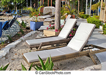 Lounge chairs - A empty lounge chairs set up along a sandy...