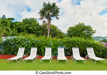 Lounge chairs - Sun chairs in tropical summer garden