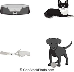 Lounger for a pet, clipping of claws in a vet clinic, lying dog, puppy with a ball. Vet clinic and pet,dog care set collection icons in monochrome style vector symbol stock illustration web.