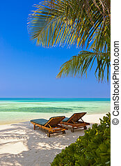 loungers, praia, maldives