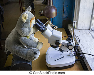 loup, microscope, jouet, par, regarde