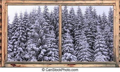 lourd, boisé, tomber, neige, secteur
