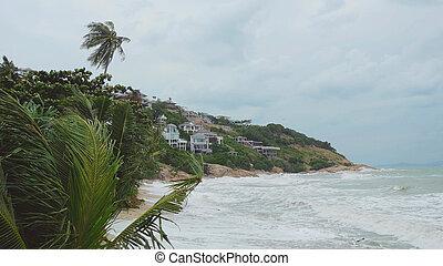 lourd, exotique, arbres, onduler, paume, sea., orage, délirer, plage