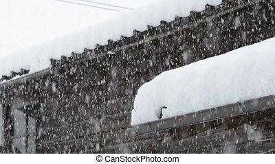 lourd, neige