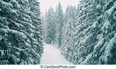 lourd, prise vue aérienne, neige, forêt