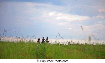 lovak, felé, néző, három, fiatal, ugrás, mező, cowboys, ...