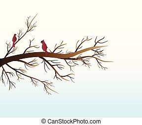 Love birds cardinals