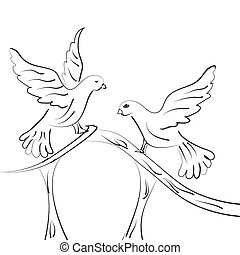 Love birds
