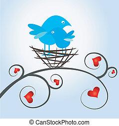love birds in the nest