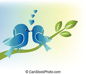Love birds on branch tree
