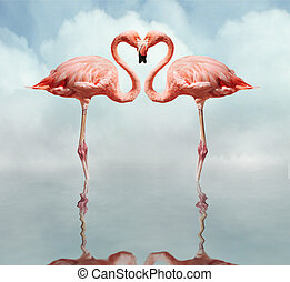 pink flamingos making a heart shape in reflection pond