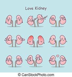 love cartoon kidney