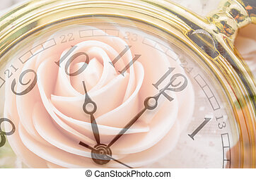 Love concept. - Composite of pink Roses and Clock. Love and ...
