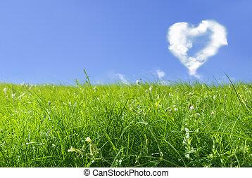 love concept - hear shape on blue sky and fresh green grass