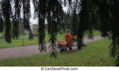 love couple on bench. Couple sitting in the park view from the branches of a tree. Young couple sitting on bench in park. Rear view. A couple is sitting on a bench contemplating life. Love