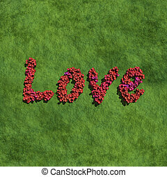 love create by red color flowers with grass