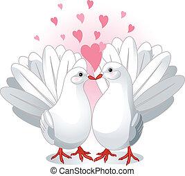 Love Doves - Illustration of two white doves pressing ...