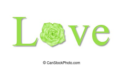 Love Flower Green - The text love with a flower on white...