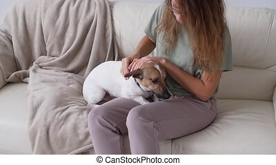 Love for animals concept. Happy woman petting her Jack Russell Terrier Dog on the couch at home