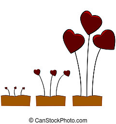 Love growing