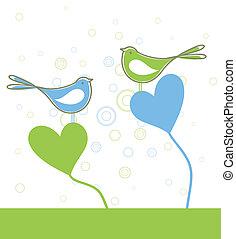 Love of birds6