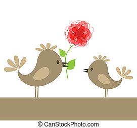 Love of birds8