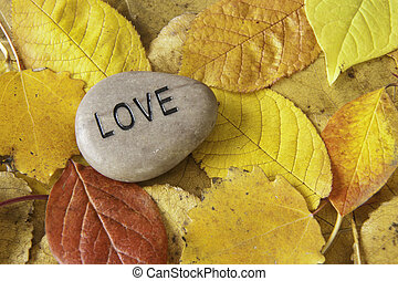Love Rock with Fall Leaves