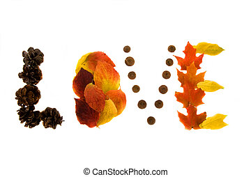Love - The word love spelled out in colored leafs on a white...