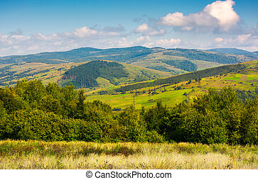 lovely Carpathian countryside in autumn. beautiful scenery...