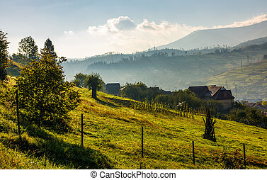 lovely Carpathian countryside in mountains. beautiful rural...