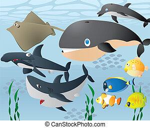 Lovely Cartoon Sea Life Background