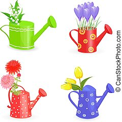 lovely collection bouquets of spring flowers in gardening wateri