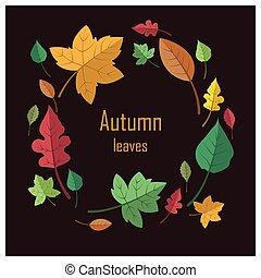 Lovely colorful autumn leaves