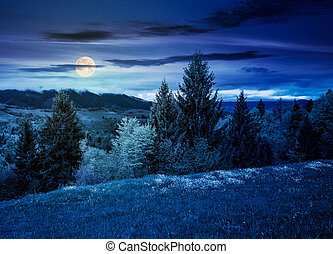 lovely countryside with grassy hills at night in full moon...