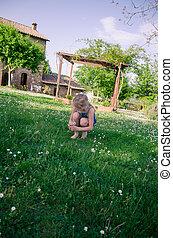 lovely girl in green meadow
